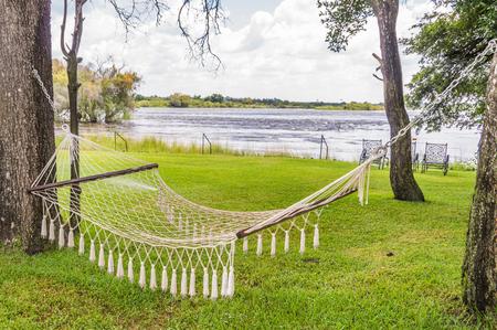 riverbank: Hammock between trees in a beautiful sunny environment