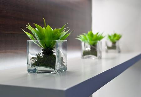 Vase photo