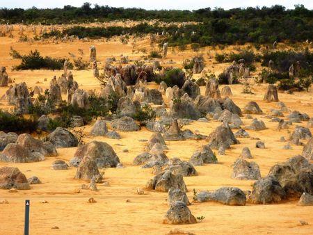 pin�culo: Pinnacle en el desierto de pin�culos en el Parque Nacional Nambung