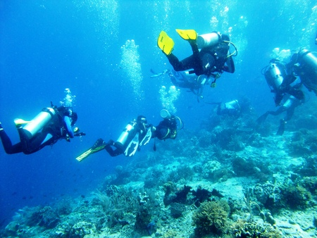 Scuba divers from below in blue sea in Indonesia