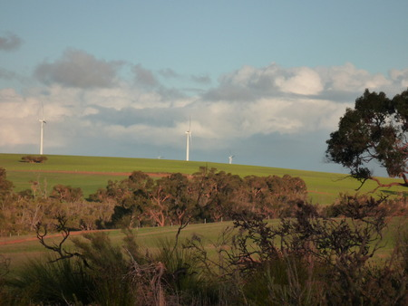 pin�culo: Parque E�lico cerca de Pinnacle en Australia Occidental Foto de archivo