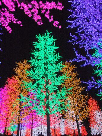 alam: Colorful digital light in I-City Shah Alam, Malaysia