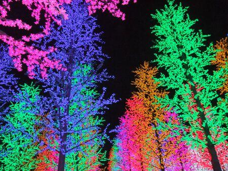 shah: Colorful digital light in I-City Shah Alam, Malaysia