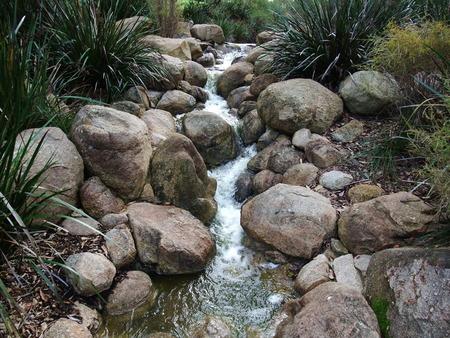 garden features: A small stream, flowing through a garden