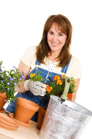 potting: Garden: Woman Potting Marigolds