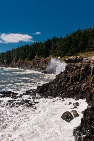 basalt: Waves crashing the basalt cliff.