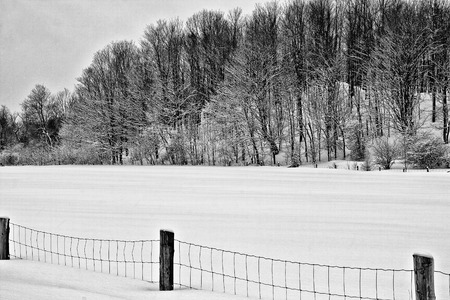 hay field: Hay field in winter. Black and white image. Stock Photo