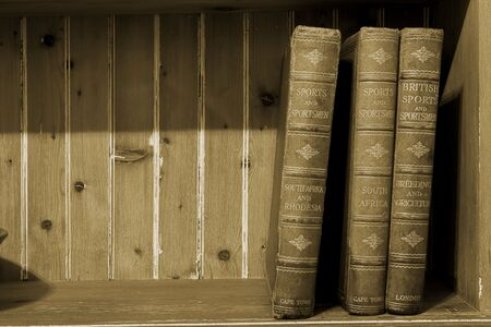 Three old books on a wooden shelf Stock Photo - 251939