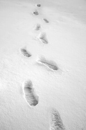 Footprints in snow.  Black and white. Stock Photo - 338656