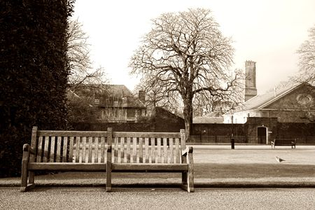 Bench in a park at wintertime.  Sepia tone. photo