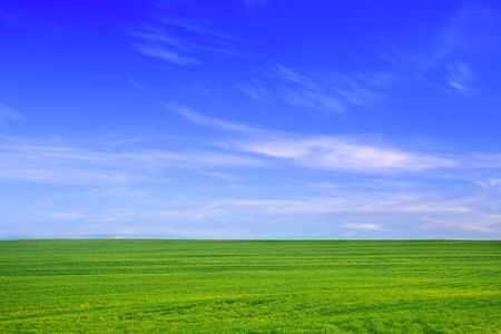 wispy: Nature background. Green grass field against a blue sky with wispy white clouds