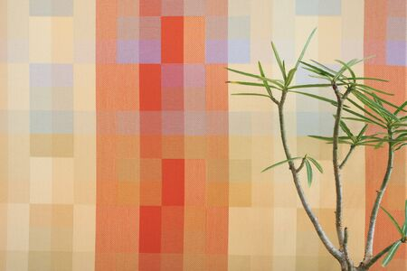 blocky: Small tree against an orange block pattern in an office