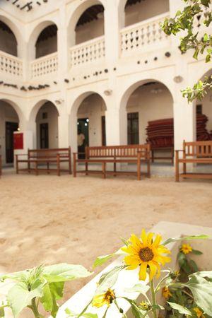 souq: The falconry square at Souq Wakif in Doha, Qatar