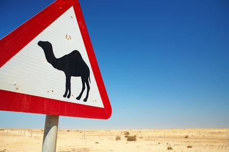 camel in desert: Warning sign for camels on the road next to the roadway in Qatar, Middle East Stock Photo