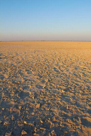 nata: The dry Makgadikgadi Pan near Nata in North East Botswana, Southern Africa