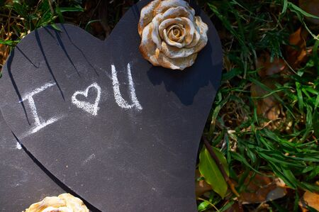 Love on a Blackboard Stock Photo - 17347074
