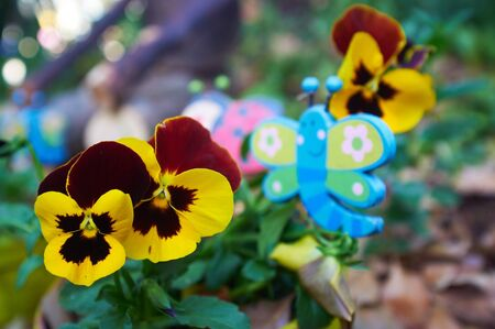 Wooden garden butterfly decoration between potted violets. Shallow Depth of Field - Focus on flowers in front Stock Photo - 19371491