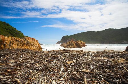 Beach covered in driftwood at the bay opening of The Heads in Knysna, Eastern Cape, South Africa Stock Photo - 19373016