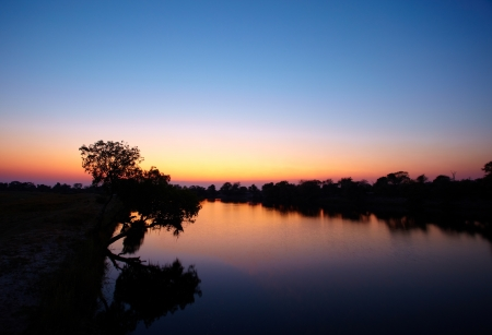 botswana: Colourful sunrise from the deck of a riverboat on the Chobe river between Botswana and Namibia in Southern Africa - Focus on tree