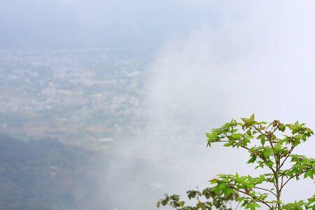 generic location: mist