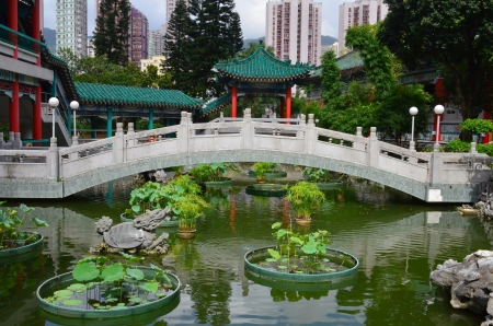 Chinese Water Garden Bridge And Reflection Amid Modern High Stock