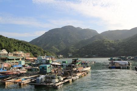 lake dweller: Sok kwu Wan, lamma island, Hong Kong