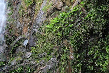 chai: Ng Tung Chai waterfall