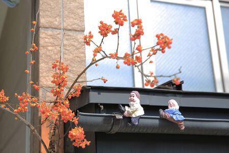 dutch culture: boy doll  on roof with fall season