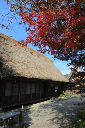 shirakawago: Shirakawa-Go fall