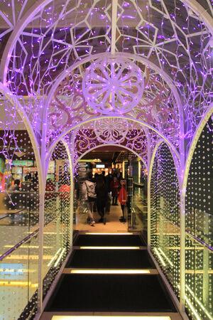 denver botanical gardens: Christmas lights