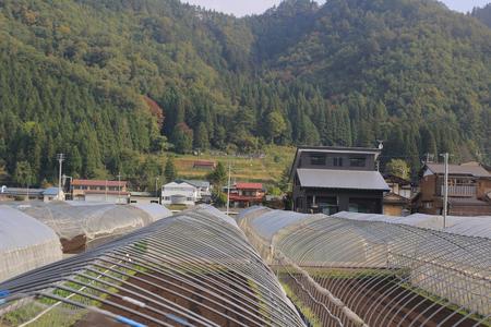 harvests: takayama countryside Editorial