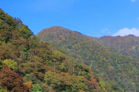 Mountain side with perene vegetation Imagens