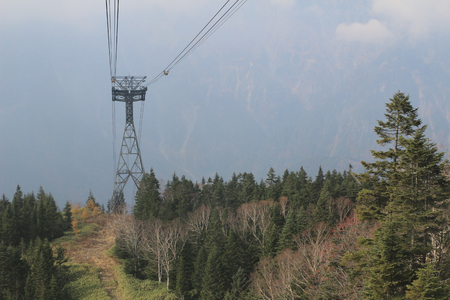 alder tree: Shinhotaka Ropeway Stock Photo