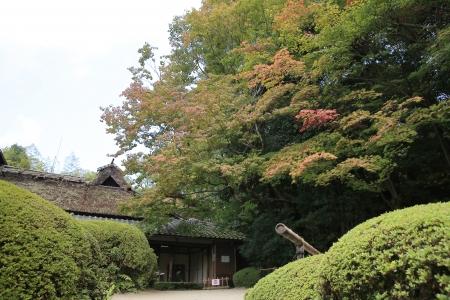 far eastern: Shisen do