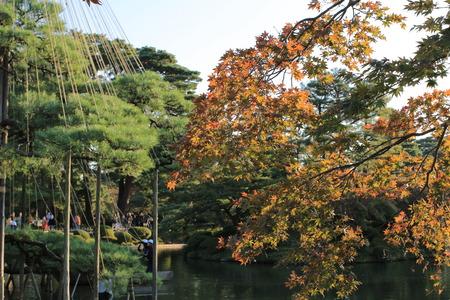 meditaion: Kanazawa garden