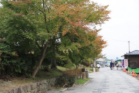 prefecture: Kyoto Prefecture