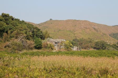 riverside landscaping: Sam A wan Stock Photo