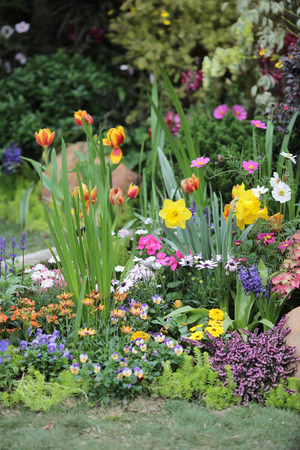 garden 스톡 콘텐츠
