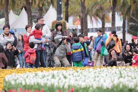 flower show: Hong Kong Flower Show