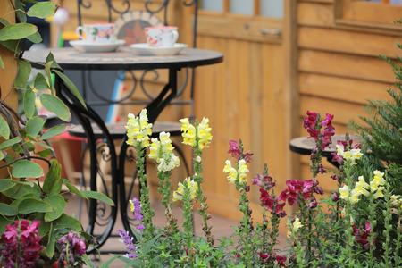 asia style garden photo