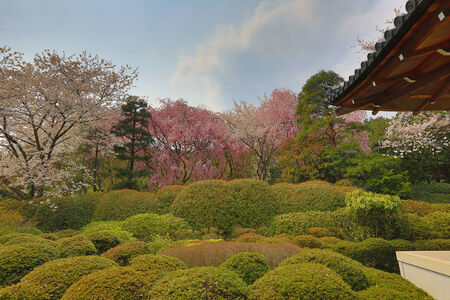 karesansui: Ryoan-ji temple in Kyoto, Japan Stock Photo