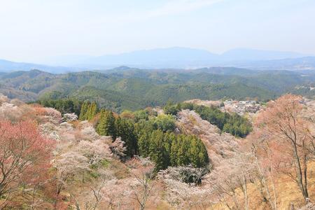 seaonal: Yoshinoyama, Nara, Japan Stock Photo