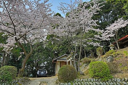 seaonal: Yoshino Mikumari Shrine, Yoshinoyama, Nara, Japan