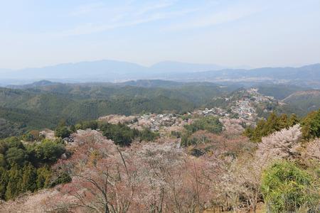seaonal: Yoshinoyama, Nara, Japan at the spring