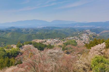 seaonal: Yoshinoyama, Nara, Japan at the spring  Stock Photo