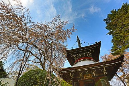 seaonal: Temple at Yoshinoyama, Japan