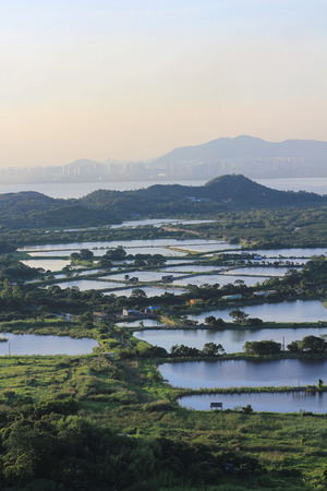 Aerial view of fish Ponds in yuen long Stock Photo - 30185490