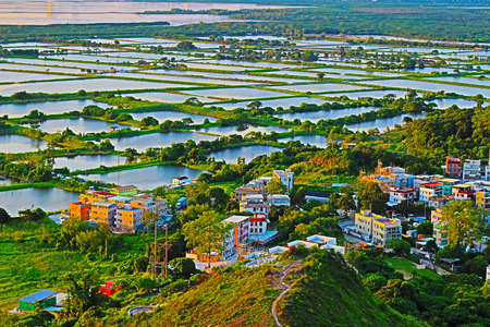 wetland conservation: fish Ponds in yuen long
