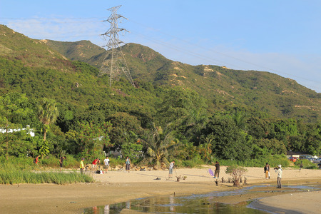 bullrush: Ha pak nai beach, yuen long