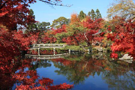 hojo: Eikan-do Zenrin-ji at fall season Editorial